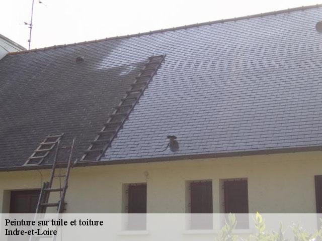 peinture sur tuile toiture 37 indre et loire t l 02 85 73 52 89. Black Bedroom Furniture Sets. Home Design Ideas